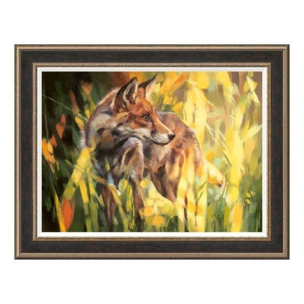 Debbie Boon - Fox In Dappled Sunlight Framed Print